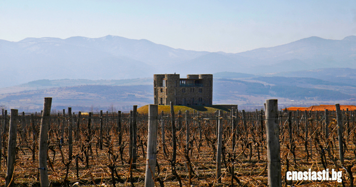 Chateau_Copsa_View