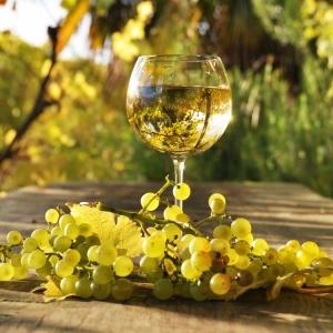 bqlo-vino-grozde; white bulgarian wine; vin bulgare blanc