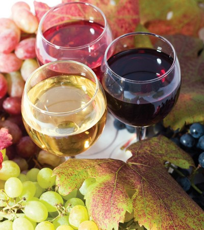 винен тур; bulgarian wine; vins bulgares