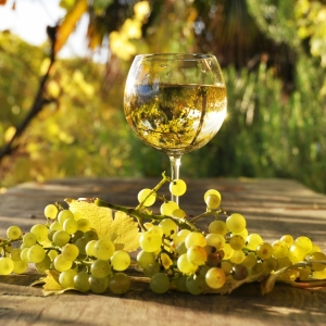 Balkan Baltic tour - wine tour offer