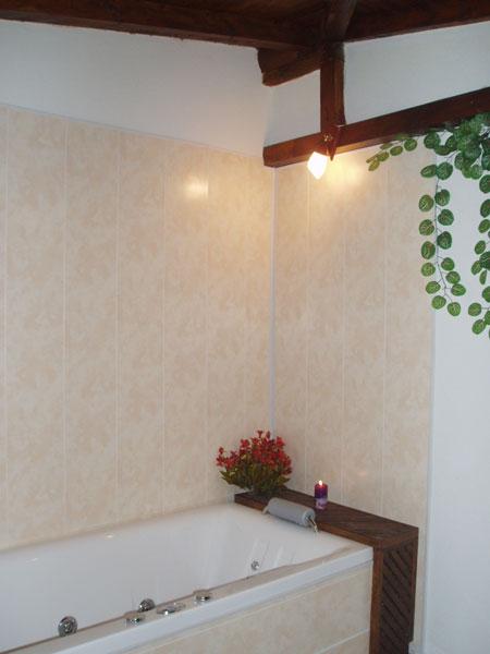 prof-bathtub